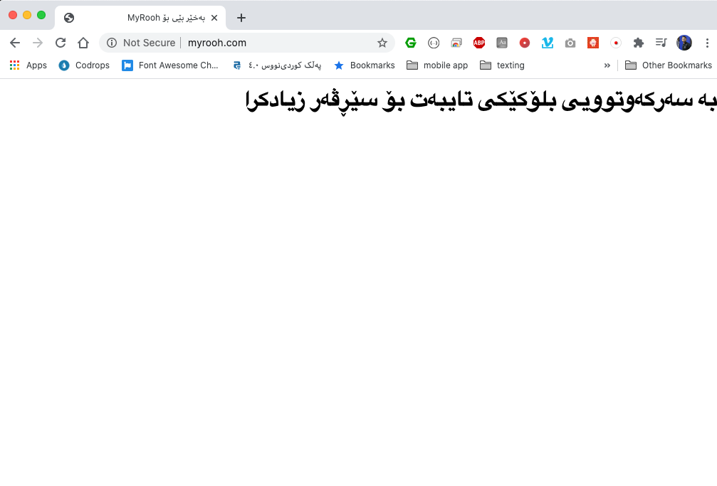 https://webchin.org/v3-images/babet/nginx/site.png